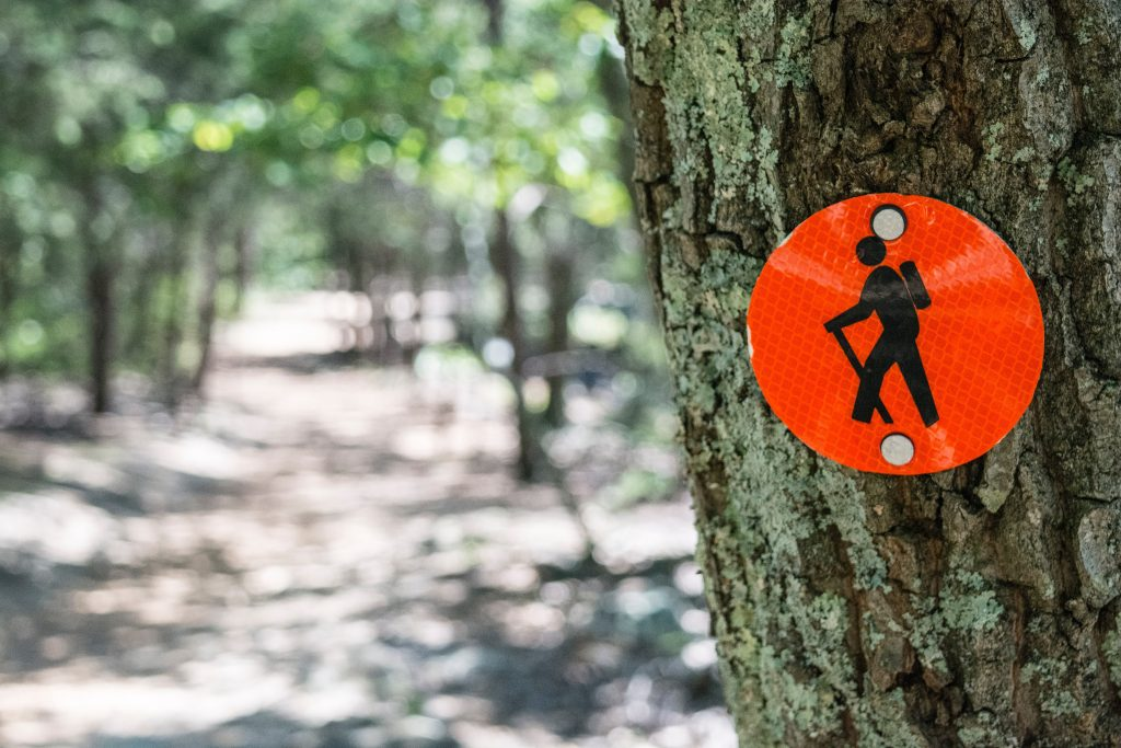 On Your Next Hike How To Get Your Kids Along