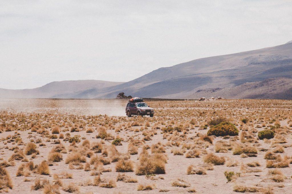 Bolivia: The Rugged High Plains