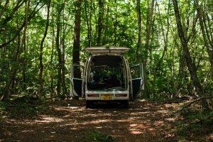 Mount Dora visit in the Orlando area