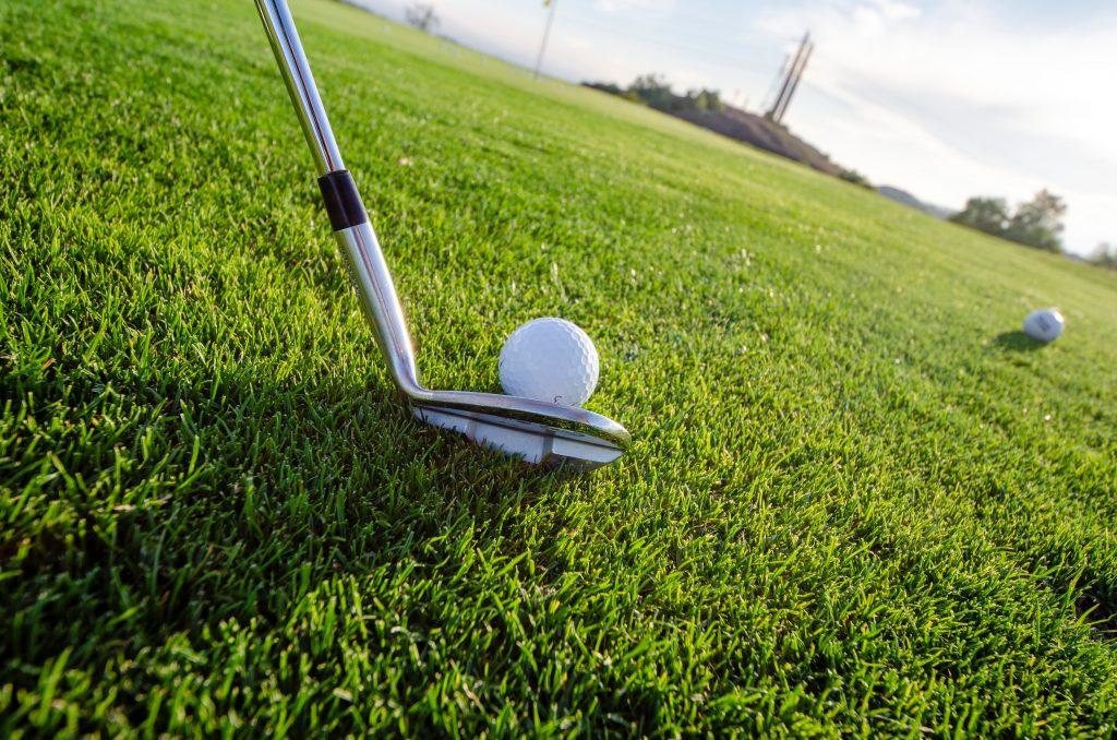Golf in the Wild