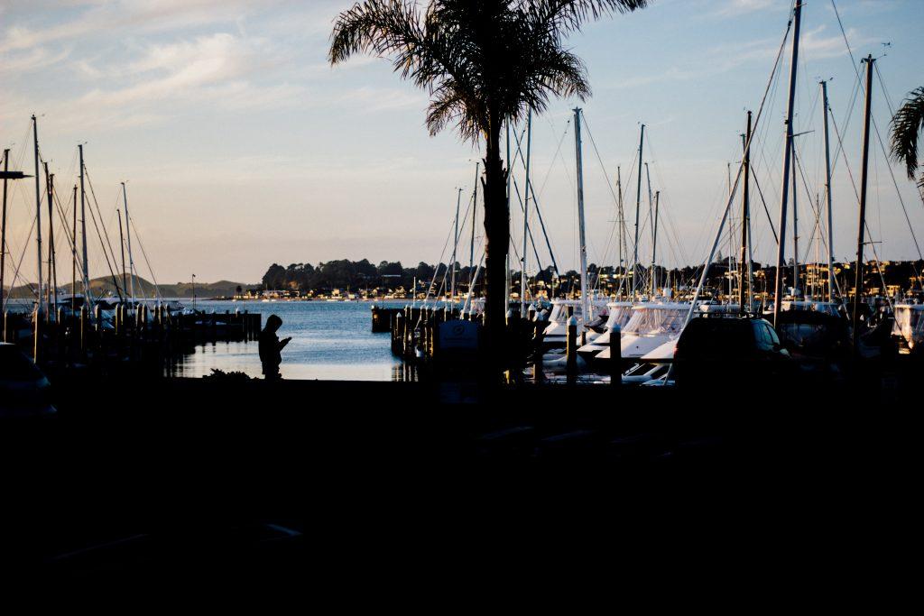 San Diego Harbor Bay Tour