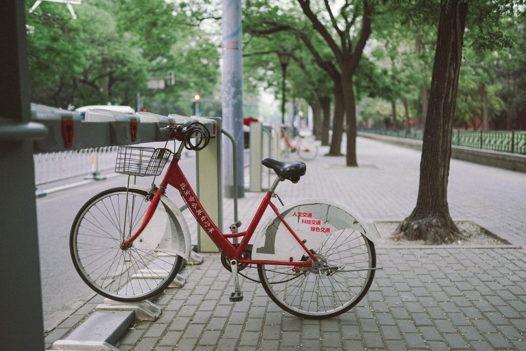 white and red bike parked beside tree